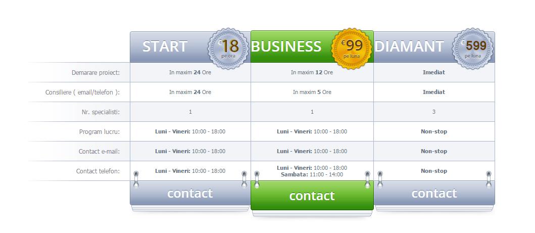 Mentenanta Site, Intretinere si administrare siteuri web